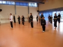 KungFu_TL2011_Form