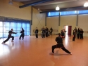 KungFu_TL2011_Training